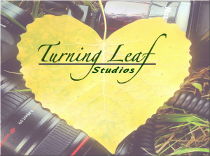 Turning-Leaf-Studios